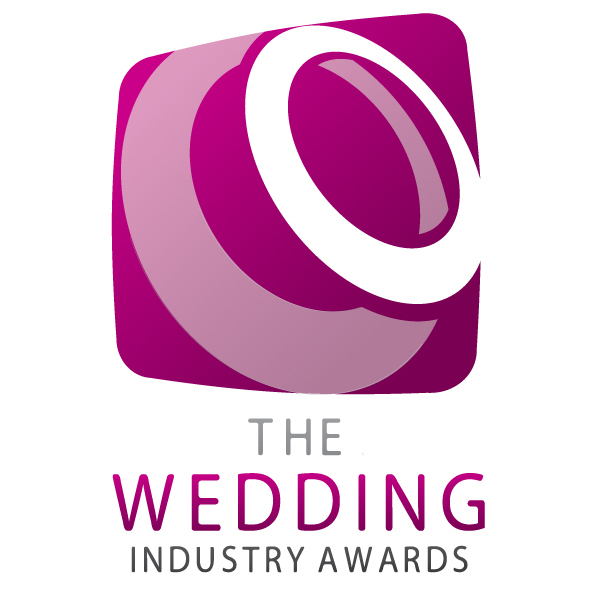 south west wedding band wedding industry awards regional winner